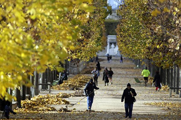 秋天的法国巴黎杜乐丽花园。(KENZO TRIBOUILLARD/AFP)