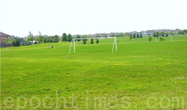 每个足球场边上都有几条长凳子供人坐。(李文笛/大纪元)