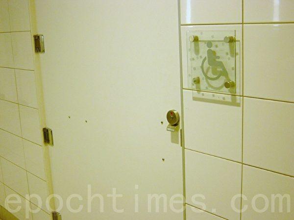 公厕内的残疾人专用厕所。(李文笛/大纪元)