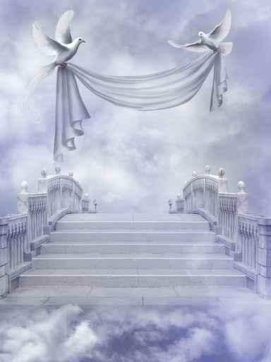 网路上一直传有许多疑似传说中天使、精灵的资料和图片。(fotolia)