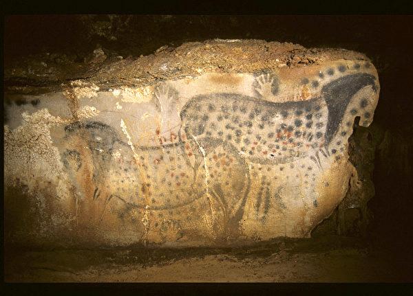 一幅绝妙的画作,这幅作品成了佩赫梅尔洞的标志。(Centre de Préhistoire du Pech Merle提供)