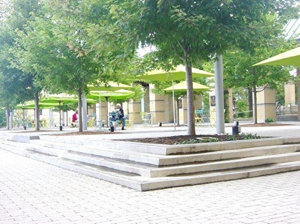 水池的右边在漂亮的枫树间,安置许多遮阳伞和桌椅供民众休憩。  (李文笛/大纪元)
