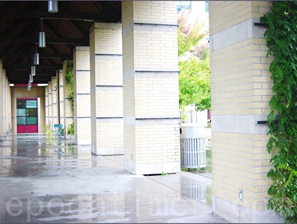 枫树林的右边是一个长走廊,不少的柱子边上种了藤状植物。 (李文笛/大纪元)