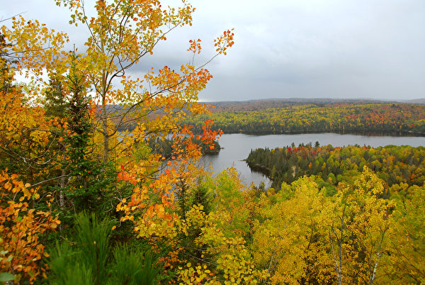 加拿大安大略省阿岡昆公園秋季森林和丘陵的美麗景色。(Fotolia)