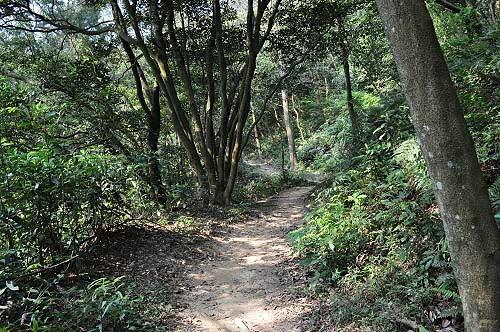 福人登山步道,優雅的泥土路徑。(圖片提供:Tony)