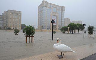 2014年9月29日豪雨雨量破纪录,造成雷兹河(Lez)河水暴涨,淹进蒙贝列(Montpellier),洪水涌进城区道路和公路,吞没汽车。(SYLVAIN THOMAS / AFP)