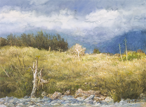 陳品華《凝視》 76×56cm 2013(圖:中華亞太水彩藝術協會提供)