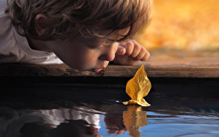 大自然可以让孩子们发挥自己的创意,除了观察与碰触之外,石头、树叶、花草都是他们最棒的游戏素材。(Fotolia)