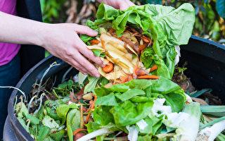 澳洲人一年浪費的食物總價值近100億澳元,一般家庭一年浪費的食物平均價值1050澳元。(Fotolia)