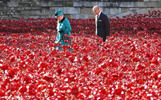 """组图:英女王参观""""罂粟花海洋""""纪念阵亡将士"""
