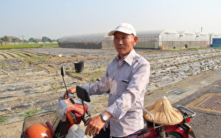 訪老農談農村人力缺乏 農業凋零