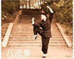 心武门国际武术总会创始人杨龙飞。(本人提供)