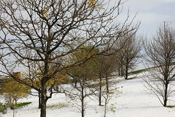 """11月7日是立冬,中国传统习俗过完立冬象征进入冬季,在冬天这个季节时,万物都得闭藏,人必须在此时""""养藏""""。(唐浩/大纪元)"""