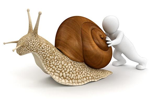 广西蜗牛哥  年年扛屋回家