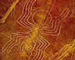秘鲁纳斯卡平原上巨画,以一条单线砌成的46公尺长的蜘蛛画。(图片提供:Peru Expeditions)
