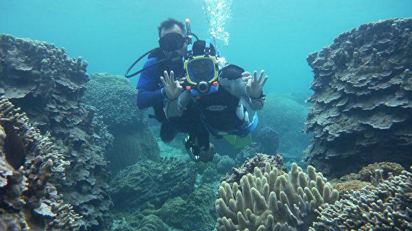 日本沖繩宮古島海水晶瑩透徹,海裡有100種以上的熱帶魚和70種以上的珊瑚礁。圖為遊客在導遊的保護下潛水觀賞熱帶魚和活珊瑚。(由宮古島「Eco Guide Cafe」提供)