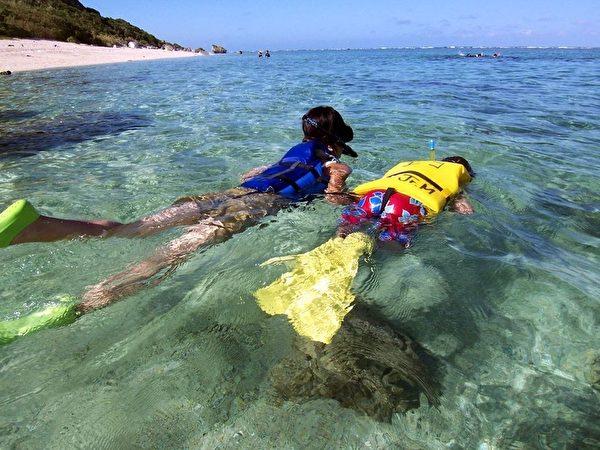 日本沖繩宮古島海水晶瑩透徹,海裡有100種以上的熱帶魚和70種以上的珊瑚礁。圖為遊客浮水觀賞水下的熱帶魚和活珊瑚。(由宮古島「Eco Guide Cafe」提供)