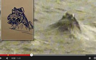 超自然现象调查员布赖特提供的照片(右),和一位受尊敬的科学家㑩伯特‧莱恩斯(Robert Rines)提供的一张尼斯湖水怪的图片(左)很类似。(视频截图)