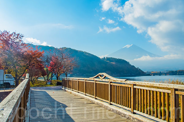 红叶与富士山。位于富士山山脚的著名富士五湖之一的河口湖正值红叶灿烂的季节。摄于2014年11月8日。(卢勇/大纪元)