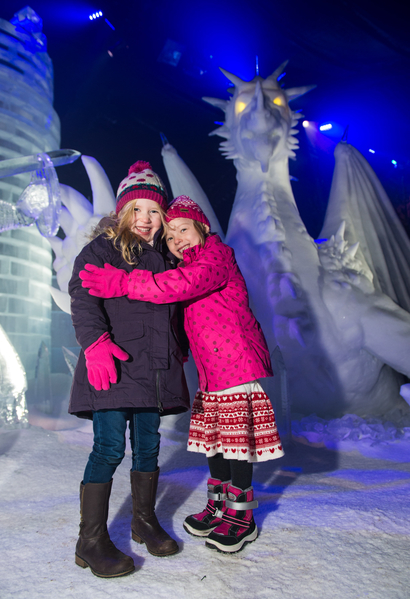 2014年11月22日,英国伦敦,海德公园打造冰雪王国,冰雕造型各异璀璨夺目。(Ian Gavan/Getty Images)