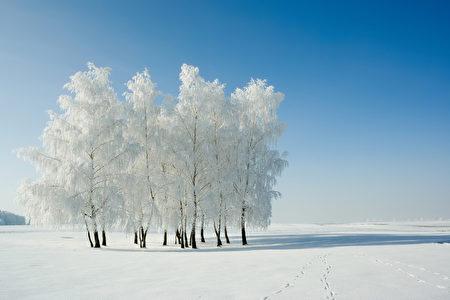 【文史】今日一陽生 冬至節氣到 | 九九歌 | 數九 | 消寒圖