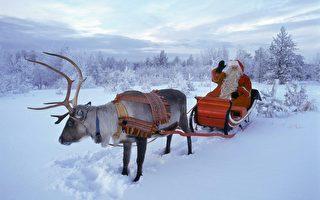 在芬兰拉普兰的罗瓦涅米,圣诞老人驾着驯鹿雪橇。(MARTTI KAINULAINEN/AFP)