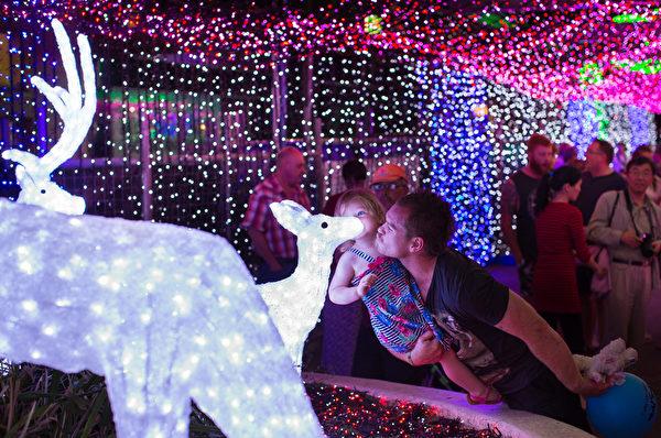 澳洲坎培拉商業中心皮特里商場(Petrie Plaza),坎培拉大律師理查茲(David Richards)的LED聖誕燈展再次打破了吉尼斯記錄。動用120萬顆LED燈打造的燈飾將和身處南國的人們一同度過聖誕迎接新年。(Stefan Postles/Getty Images)