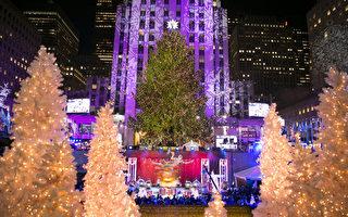 组图:全球点亮圣诞树 五彩缤纷迎佳节
