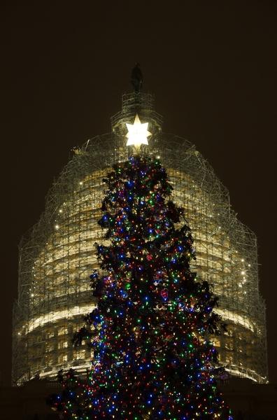 2014年12月2日,美國華盛頓特區國會大廈前,點亮一棵88英尺長的白雲杉聖誕樹。( JIM WATSON/AFP/Getty Images)