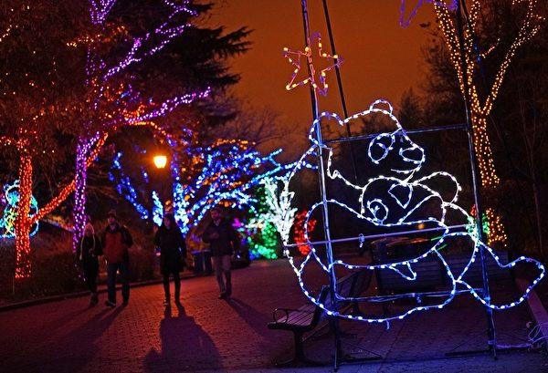 2014年12月8日,美国华盛顿特区国家动物园旁边的圣诞灯饰,由超过50万个LED灯装置而成。(MANDEL NGAN/AFP/Getty Images)