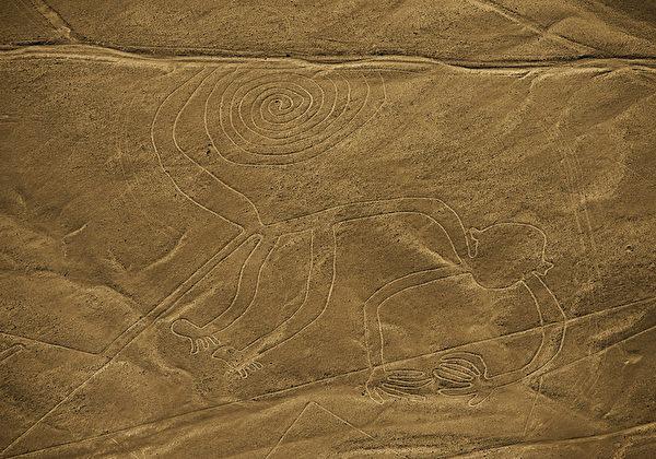 秘鲁地表的猴子图案。(MARTIN BERNETTI/AFP)