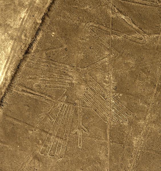 秘鲁地表的火烈鸟图案。(MARTIN BERNETTI/AFP)
