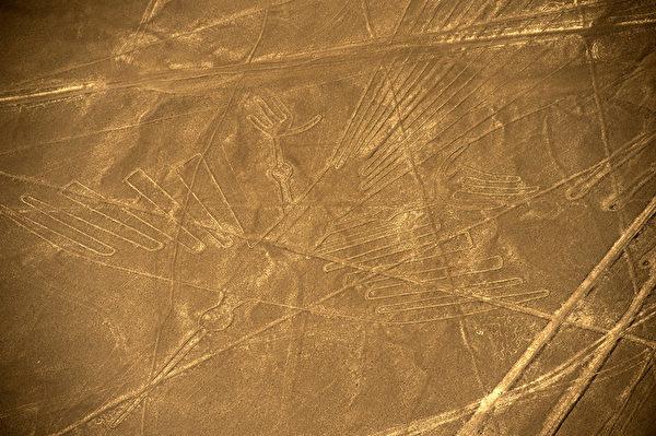秘鲁地表长约134米的秃鹫图案。(MARTIN BERNETTI/AFP)
