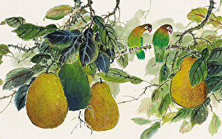 柚子(彩墨)46×94cm (圖片來源:畫家提供)