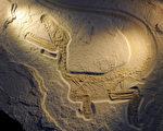 """配图:如果""""将恐龙化石与鸟骨头黏合将会填补生物进化理论的一项空白……"""" (AFP)"""