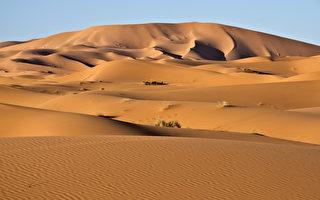 沙丘沙漠(fotolia)