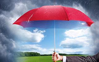 墨尔本华裔银行家转行卖雨伞发财