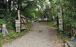 新北市石碇.二格山自然中心森林步道.蕃薯窩山