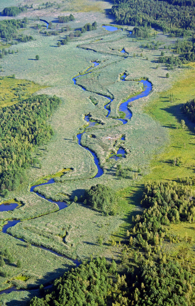 鸟瞰波兰华沙Rospuda谷地景色 (RAFAL NYTKO/AFP/Getty Images)