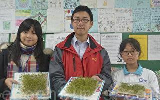 體驗種子生命力  文雅師生孵芽菜