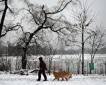 1月26日(週一)開始,從西到東的大半個美國正在經歷「歷史性」暴風雪,其中以東北部地區在週一、週二的情形最為嚴重。圖:1月24日雪中的紐約市景。(TIMOTHY A. CLARY/AFP/Getty Images)