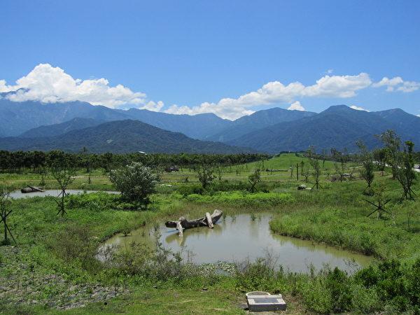 生态池用来储存雨水,不仅能灌溉作物,也能养殖、防灾等,好处多多。自从有了生态池后,水中生物及鸟类都增加不少呢! (图:屏东处林政科提供)