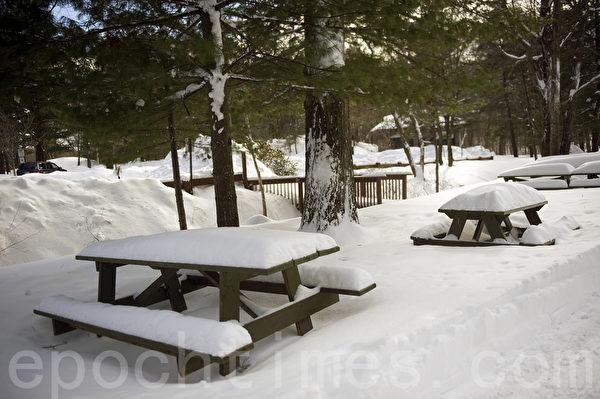 2015波士頓暴風雪後,公園異常冷清。(攝影:徐明/大紀元)