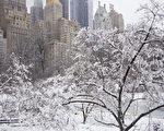 2015.02.02紐約雨雪(戴兵/大紀元)