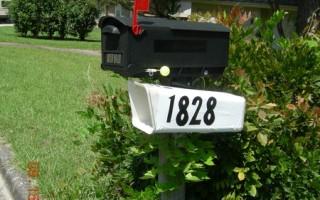 色彩新信箱,鲜艳夺目。(作者提供)