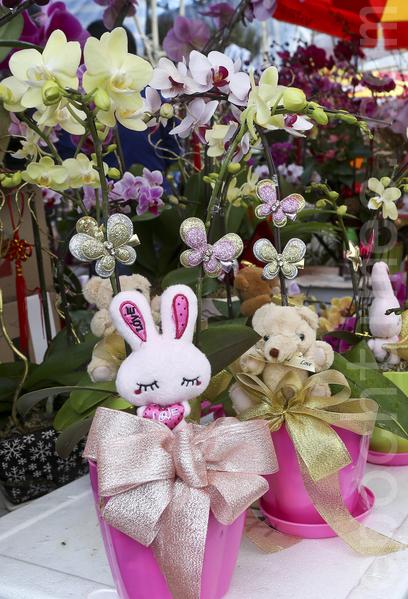 今年年宵遇上了情人节,有摊档推出有小熊等玩偶的花束。(余钢/大纪元)