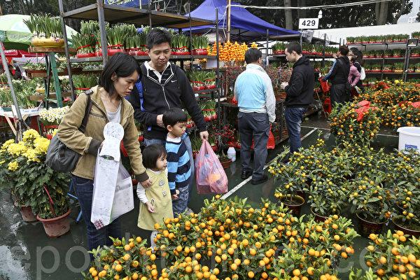 羊年新年临近,香港维园年宵花市人头涌涌。(余钢/大纪元)