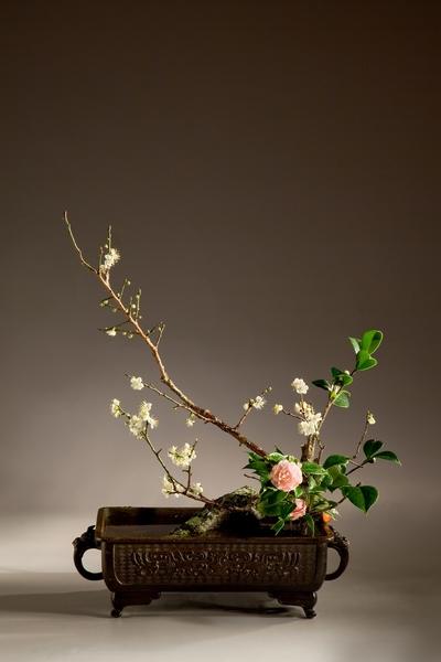 年花〈只留清气满乾坤〉 花材:梅花、山茶 花器:铜盘 花型:心象写景花(中华花艺文教基金会提供)