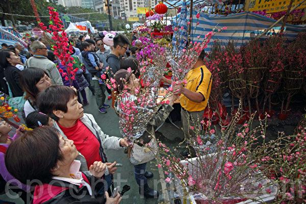 细扎桃花,去年卖80元一扎,今年50元有交易。(潘在殊/大纪元)