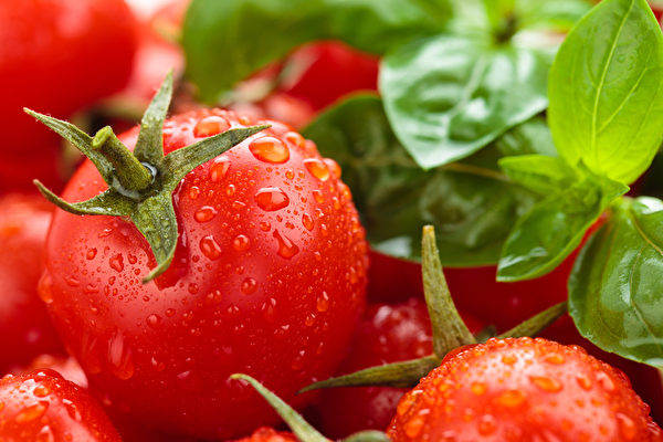 西红柿含有抗氧化剂番茄红素、类胡萝卜素,有助于降低坏胆固醇(LDL),保持血管健康,以降低心脏疾病的风险。(fotolia)